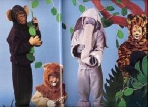 Snazaroo Animal Costumes